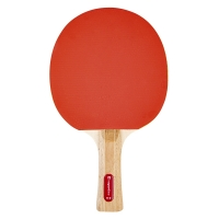 Insportline 21554 Table Tennis