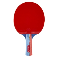 Insportline 21557 Table Tennis
