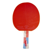 Insportline 21559 Table Tennis